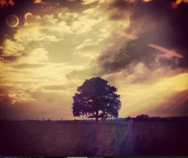 Sunset Chasing // FlickrAlbum